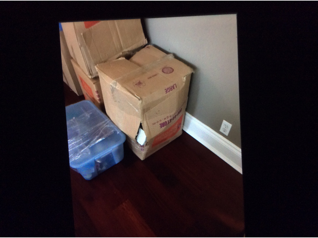 79 Reviews For All American Moving And Storage Inc From